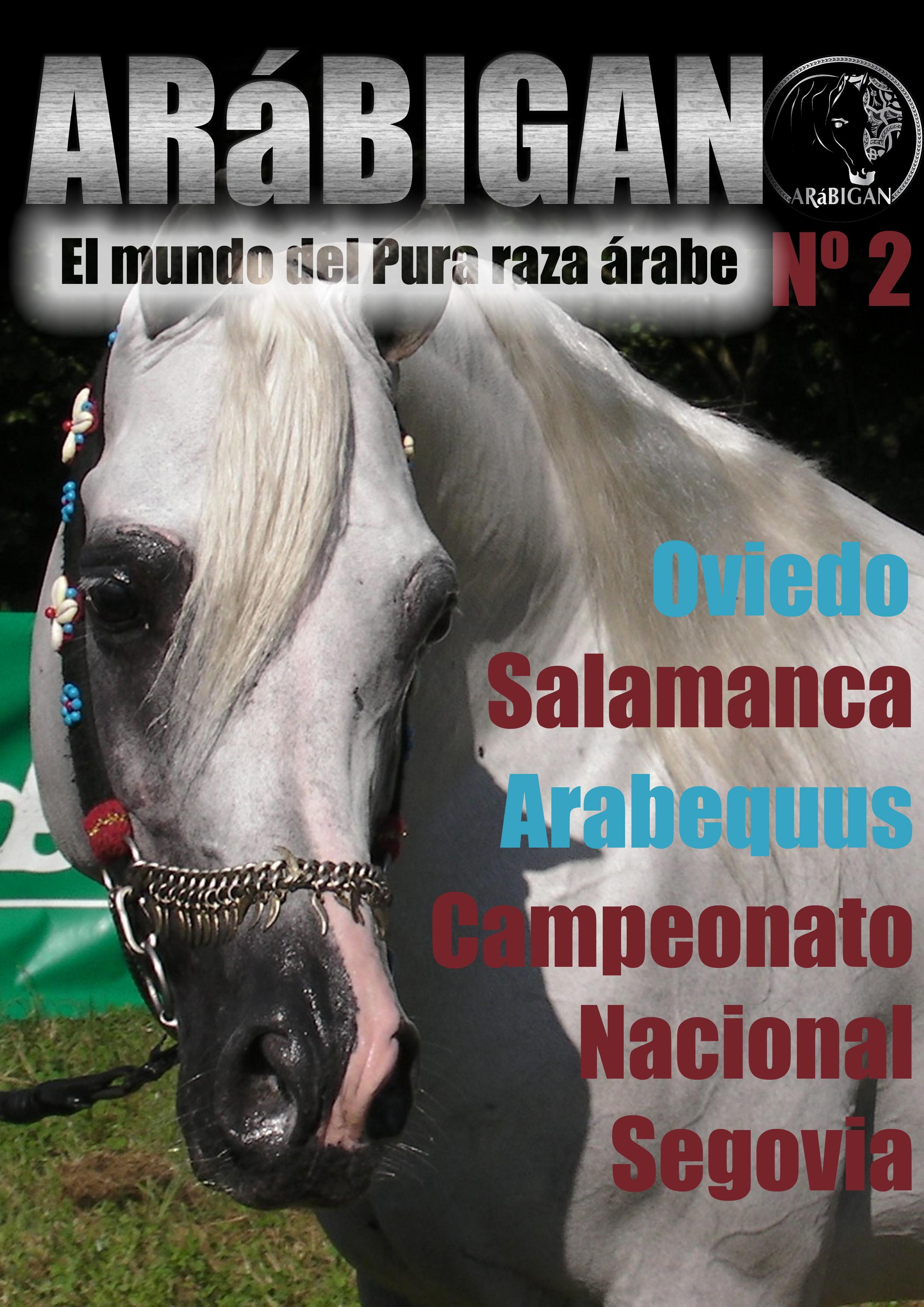 revista arábigan nº 2