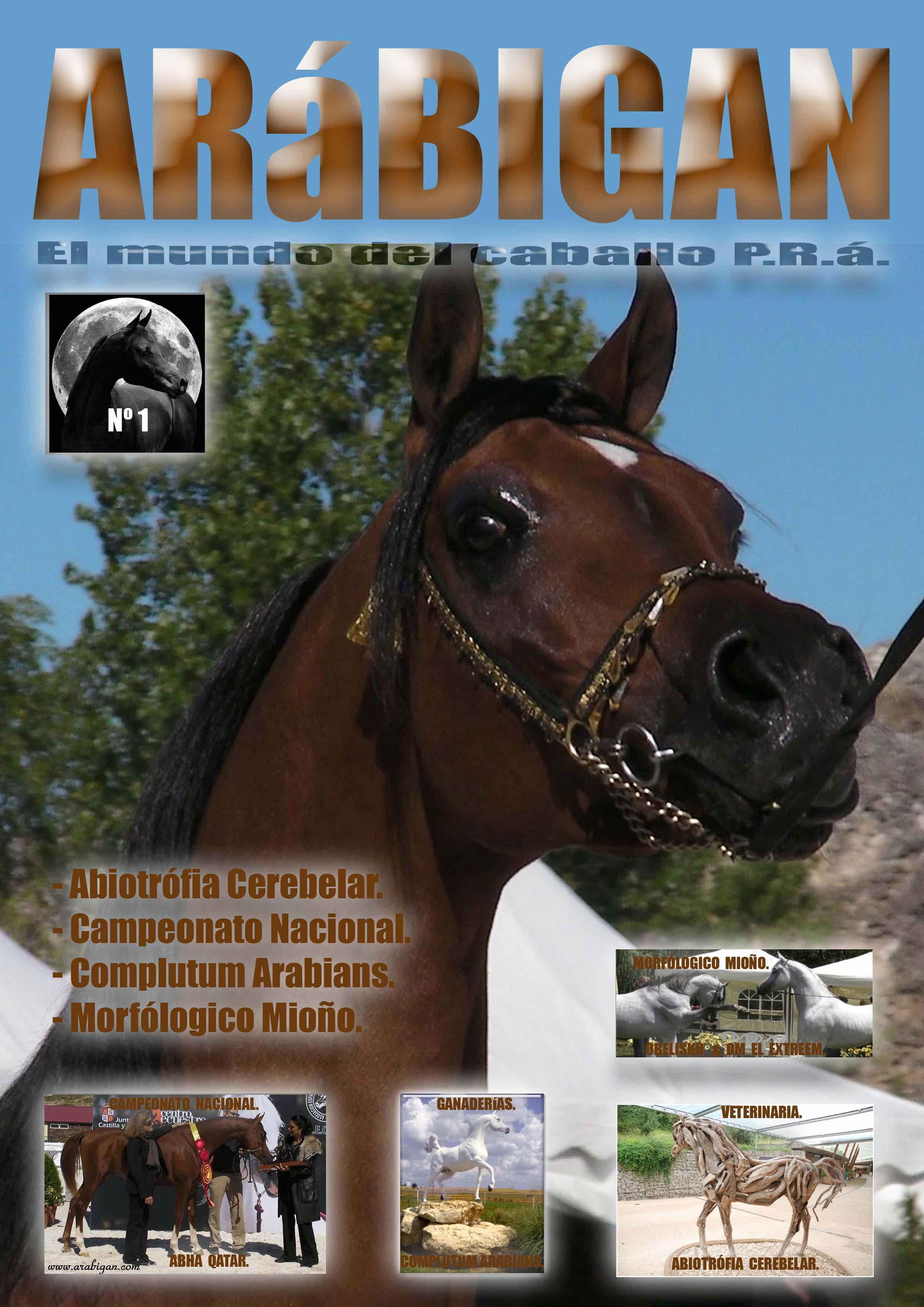 Revista Arábigan nº 1
